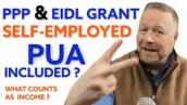 Self-Employed PPP \u0026 EIDL Grant Gross Receipts [Income for PPP Loan \u0026 EIDL Target Grant] PPP 2 \u0026 EIDL